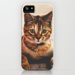 Cute Young Tabby Cat Kitten Kitty Pet iPhone Case