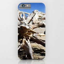 40 Mile Pt. Driftwood iPhone Case