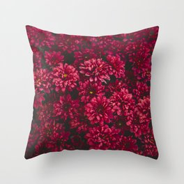 Painting The Flowers Red Throw Pillow