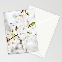 White blooming Stationery Cards