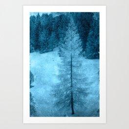 crystal larch Art Print