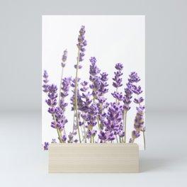 Purple Lavender #1 #decor #art #society6 Mini Art Print