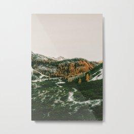 Maize Metal Print