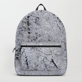 Cottonwood Frost Backpack