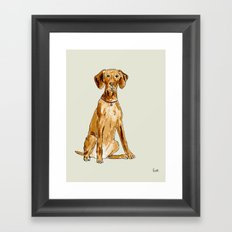 Vizla Framed Art Print