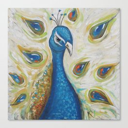 Peacock with White Canvas Print