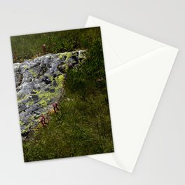 STONES LICHEN NUGGET Stationery Cards