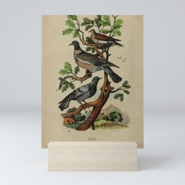 Pigeons 51 Mini Art Print