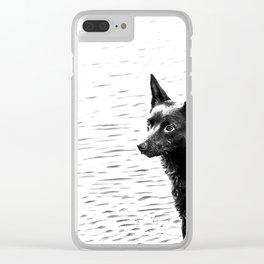 Australian kelpie, Australian sheep dog Clear iPhone Case