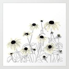 Wild Coneflowers in White Art Print
