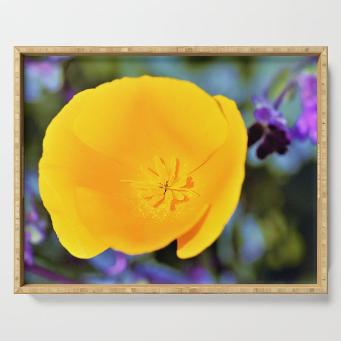 California Poppy with Purples by Reay of Light Photography Serving Tray