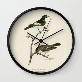 Hen Harrier male (Circus cyaneus) illustrated by the von Wright brothers Wall Clock
