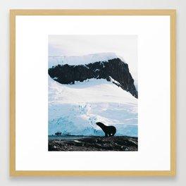SealOuette Framed Art Print