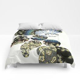 FOCUS 1 Comforters