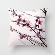 Signs Of Spring Throw Pillow
