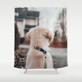 Dog by Richard Brutyo Shower Curtain