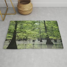 Cypress Trees in the Louisiana Swamp Rug
