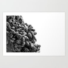 blackshells ii Art Print
