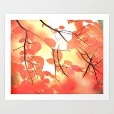 Ablaze With Color Art Print