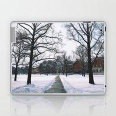 The Frozen Quad Laptop & iPad Skin