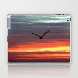 Black Gull by nite Laptop & iPad Skin