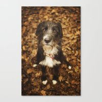ruby Canvas Prints featuring Ruby by Alex Malyon