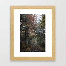 Minnewaska State Park Framed Art Print