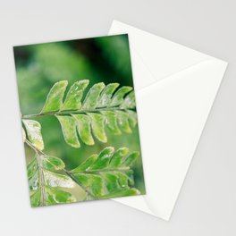 Branching off Stationery Cards