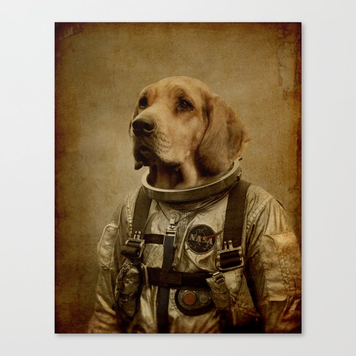 Discover space Canvas Print