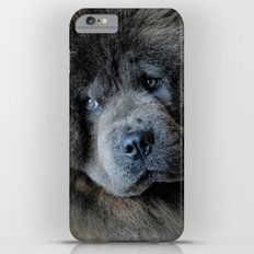 Watching Master - Blue Chow Chow iPhone 6 Plus Slim Case
