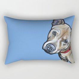 Fenway Rectangular Pillow