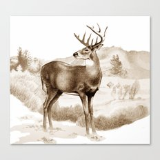White-tailed Stag Sniffing the Air Canvas Print