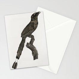 Motmot from Histoire Naturelle des Oiseaux de Paradis et Des Rolliers (1806) by Jacques Barraband (1 Stationery Cards