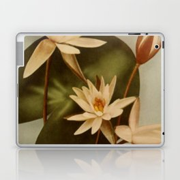 Vintage Water Lily Laptop & iPad Skin