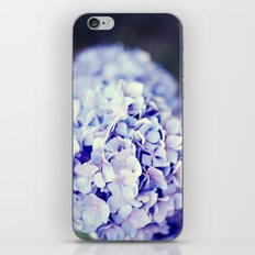 Purple Hydrangeas iPhone & iPod Skin