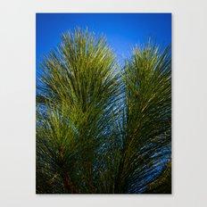 Reach for the Blue Canvas Print
