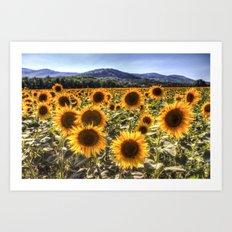 The Sunflower Summer Art Print