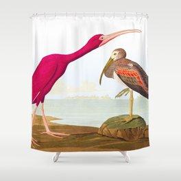 Scarlet Ibis Bird Shower Curtain