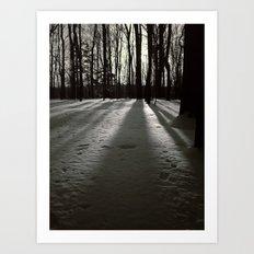 Wooded Winter Art Print
