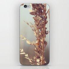 Grass Beside the Sea iPhone & iPod Skin