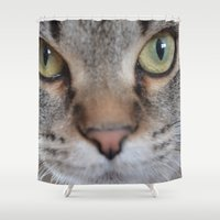 arya Shower Curtains featuring Cat by Kellie Eickstead