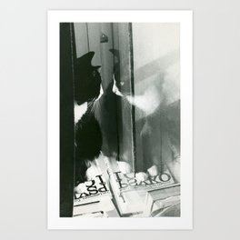 Psyko kissa Art Print