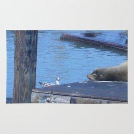 Seagull and Sea Lion Rug