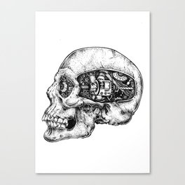 Skull - II Canvas Print