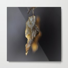 Dancing Leaf Metal Print