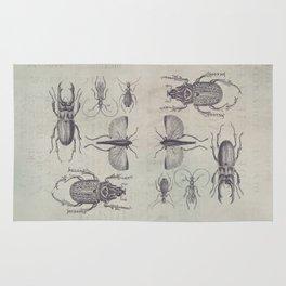 Vintage Beetles And Bugs Rug