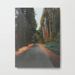 Eugene - Skinners Butte Metal Print