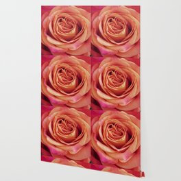 A Summer Bouquet 12 - orange rose Wallpaper