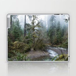 A Creek Runs Through It Laptop & iPad Skin