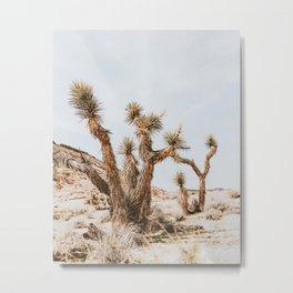 Joshua Tree III Metal Print